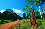 Cape York - 8 Day Accommodated Safari Drive/Fly