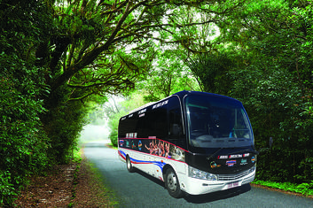 Cairns City to Port Douglas Return Shuttle
