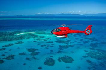 Half Day - Heli both ways to Reef Cruise